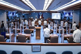 Senators lament wrongful or non-implementation of laws over IRR issues with executive agencies