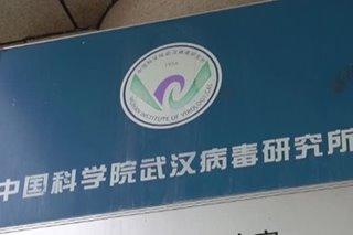 Wuhan lab had 3 live bat coronaviruses: Chinese state media