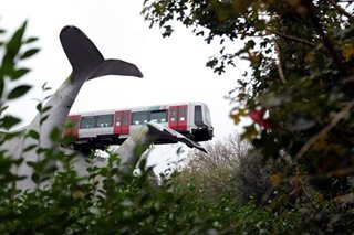A whopper of a tale? Tram runs off track, lands on whale statue's tail