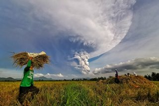 Economic planning chief says Taal volcanic activity can't derail PH economic growth for now