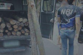2 timbog sa pagbebenta ng mga endangered wood species