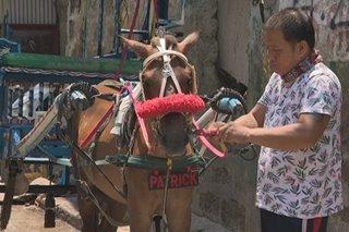 'Baon na sa utang': Ayuda apela ng mga kutsero, tour guide sa gitna ng pandemya