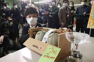 Japan premium melons go for P1.2 million after virus slump