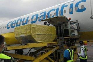 Cebu Pacific flies more COVID-19 vaccines to Visayas, Mindanao