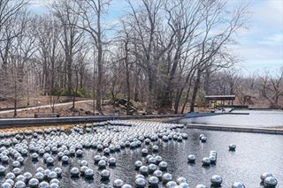 Pumpkins, peas, peonies: New York exhibit celebrates Japan's Kusama