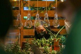 LOOK: Haven for plantitas and plantitos