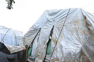 Higit 100 pamilyang apektado ng pagsabog ng Taal volcano, wala pa ring malilipatan