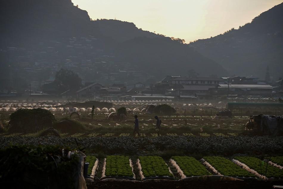 Benguet temperature drops to 7.9 degrees Celsius as amihan persists 1