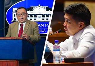 Palace on lawmaker's ivermectin distribution: Wait for regulator approval