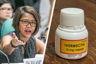 'Kung hayop ka, di uminom ka': Binay jokes about ivermectin use