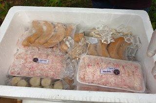 Halos 500 kilo ng ilegal na frozen meat products, nakumpiska sa Oriental Mindoro