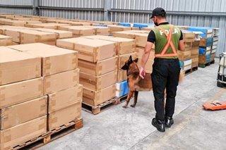 P78-M halaga ng smuggled at pekeng sigarilyo, nasamsam sa Subic