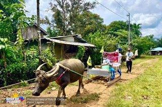TINGNAN: 'Kalabaw Caravan' ng mga guro sa Paete, Laguna