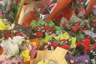 1 linggo bago Valentine's: Presyo ng Baguio roses, may taas-presyo na sa Dangwa