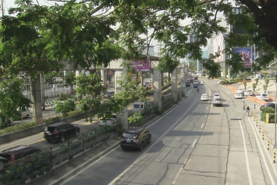 Green EDSA movement' inilunsad para pagandahin ang EDSA   ABS-CBN News
