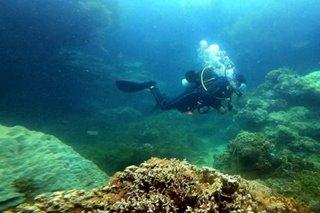 Dive tourism, isusulong sa Sorsogon