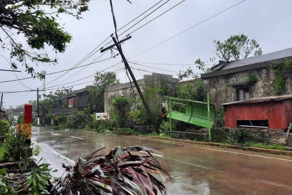 Trees, utility posts toppled, as Kiko batters Batanes 3