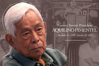 Nene Pimentel's one true legacy