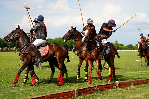 This polo club in Bulacan wants to encourage more people to learn this 'sport of kings'
