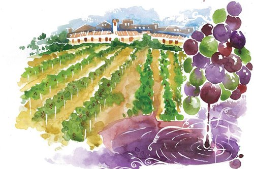 The trouble with Burgundy: why selecting a good one is like walking through a minefield