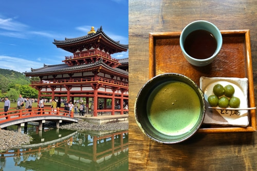 Uji: The Japanese city where matcha dreams come true