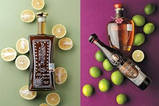 Seven Mexican tequilas we tasted for your consideration