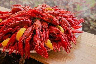 Not quite a lobster, not quite a shrimp, the crayfish are coming to Manila by the boatload