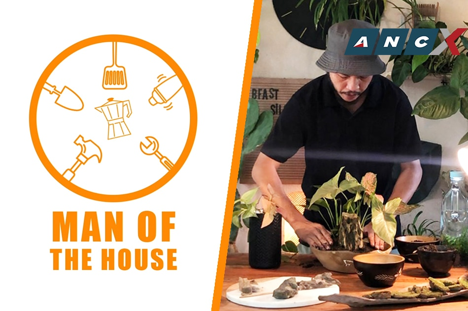 How to make a DIY tabletop garden | Man of the House
