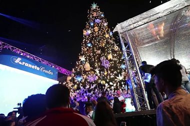 49 days to X'mas: Giant Christmas tree goes up in Cubao