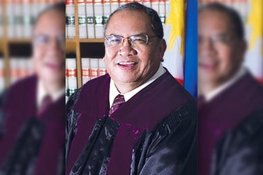 READ: Justice Perez's separate opinion on Marcos burial cases