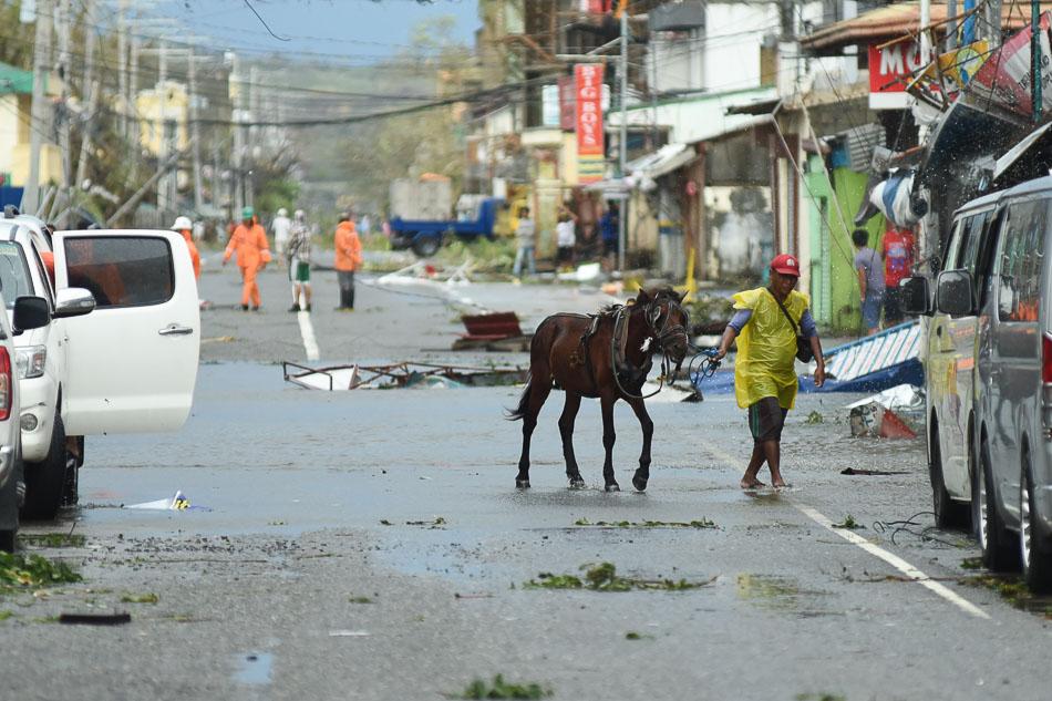 LOOK: Super typhoon Lawin's path of devastation 15